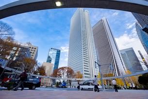 【東京都】西新宿ビジネス街【2020秋】の写真素材 [FYI04765509]