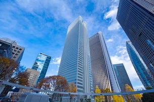 【東京都】西新宿ビジネス街【2020秋】の写真素材 [FYI04765510]
