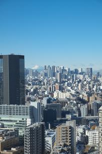 【東京都】文京区シビックセンターより鳥瞰【2020冬】の写真素材 [FYI04765538]