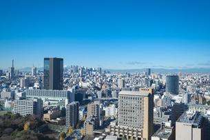 【東京都】文京区シビックセンターより新宿・池袋方面【2020冬】の写真素材 [FYI04765553]