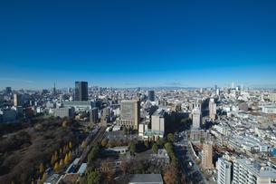 【東京都】文京区シビックセンターより新宿・池袋方面【2020冬】の写真素材 [FYI04765562]