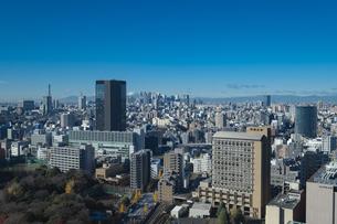 【東京都】文京区シビックセンターより新宿・池袋方面【2020冬】の写真素材 [FYI04765563]