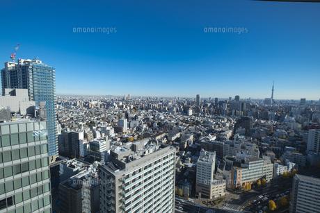 【東京都】文京区シビックセンターより鳥瞰【2020冬】の写真素材 [FYI04765576]
