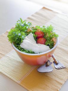 オレンジ色のボウルに盛り付けられたサラダチキン入り野菜サラダの写真素材 [FYI04765921]