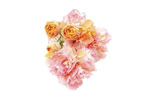薔薇とカーネーションの花束の写真素材 [FYI04765942]