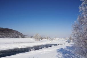 寒い冬の日の朝の川の写真素材 [FYI04766031]
