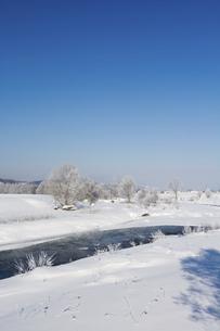 寒い冬の日の朝の川の写真素材 [FYI04766032]