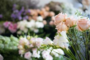 花の並んでいるフローリストの写真素材 [FYI04766106]