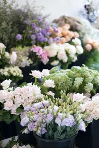 花の並んでいるフローリストの写真素材 [FYI04766107]