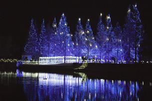 茨城県、水と緑のふれあい公園のイルミネーションの写真素材 [FYI04766167]