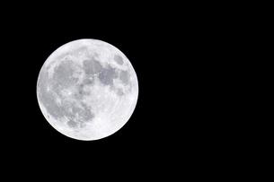 夜空に浮かぶ満月の写真素材 [FYI04766259]