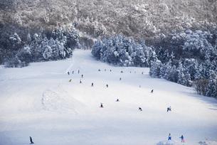 雪山ゲレンデのスキー客とスノーボードの写真素材 [FYI04766495]