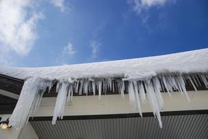 雪と青空とつららの写真素材 [FYI04766496]