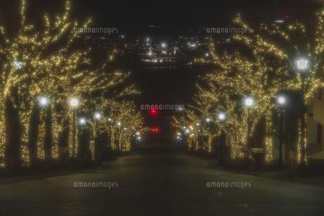 函館八幡坂からの夜景の写真素材 [FYI04766900]