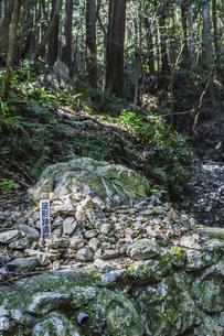 天の岩戸の森に見る足形跡遺跡の写真素材 [FYI04766978]