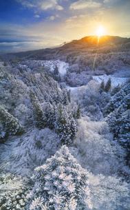 別所森林公園付近から望む独鈷山から昇る朝日と新雪の樹林の写真素材 [FYI04767048]
