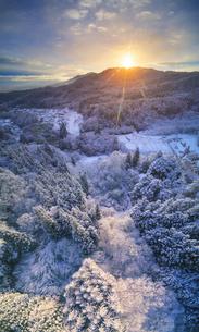 別所森林公園付近から望む独鈷山から昇る朝日と新雪の樹林の写真素材 [FYI04767049]