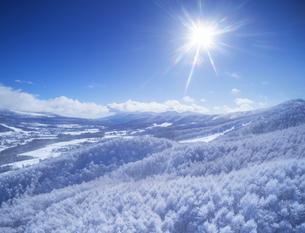 県道34号長野市境付近から望む霧氷と浅間山方向の山並みの写真素材 [FYI04767062]