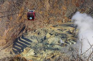 大涌谷の噴煙によって枯れた木と箱根ロープウェイの写真素材 [FYI04767494]