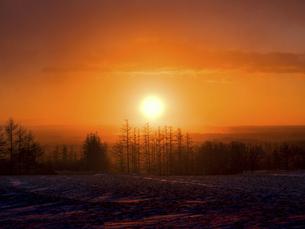 日の出の写真素材 [FYI04767613]