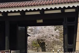 会津若松城(鶴ヶ城)黒鉄門の写真素材 [FYI04767720]