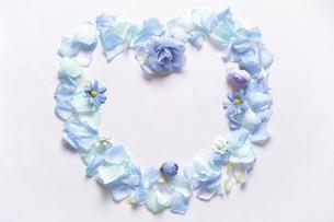 造花の青い花と花びらで模ったハートのフレーム。白いコピースペース。平置きの俯瞰撮影。白バック。の写真素材 [FYI04767726]