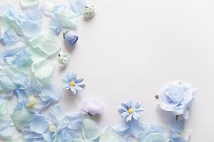 白背景に造花の青い花と花びらで囲んだフレーム。平置きの俯瞰撮影。の写真素材 [FYI04767734]