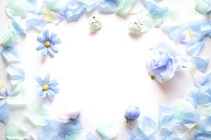 白背景に造花の青い花と花びらで囲んだフレーム。平置きの俯瞰撮影。の写真素材 [FYI04767741]