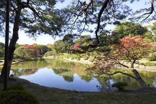 紅葉シーズンの六義園の写真素材 [FYI04767835]