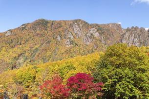 北海道 層雲峡の紅葉の写真素材 [FYI04768119]