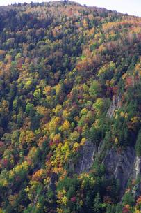 北海道 層雲峡の紅葉の写真素材 [FYI04768130]
