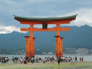 厳島神社の写真素材 [FYI04768438]