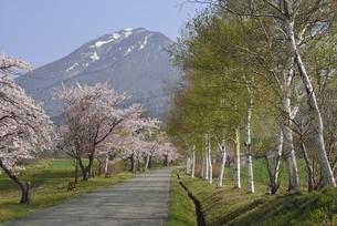 磐梯山 町営牧場の写真素材 [FYI04768588]