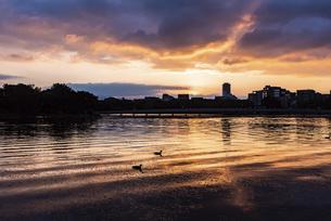 大濠公園夕景の写真素材 [FYI04768633]