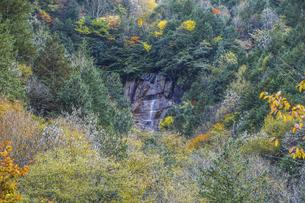 阿寺渓谷雨現の滝の写真素材 [FYI04768737]