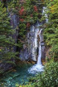 紅葉を見る柿其渓谷牛ヶ滝の写真素材 [FYI04768745]