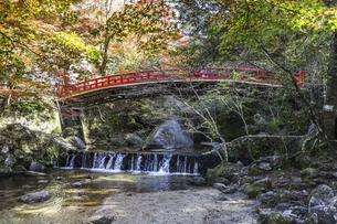 紅葉を見る岩屋堂紅橋風景の写真素材 [FYI04768748]