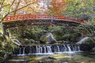 紅葉を見る岩屋堂紅橋風景の写真素材 [FYI04768749]