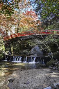 紅葉を見る岩屋堂紅橋風景の写真素材 [FYI04768751]