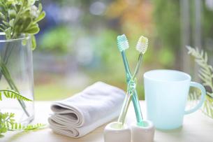 2本の歯ブラシの写真素材 [FYI04768782]