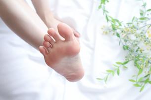 足の指の写真素材 [FYI04769050]