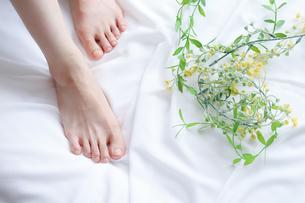 足の甲の写真素材 [FYI04769051]