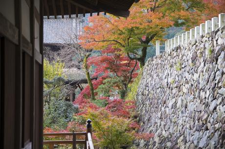 秋の行基寺の写真素材 [FYI04769126]