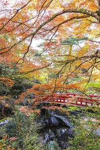 紅葉で覆われた岩屋堂紅橋の写真素材 [FYI04769145]