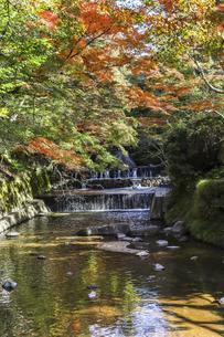 岩屋堂紅葉と川面の写真素材 [FYI04769149]