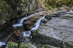 岩屋堂瀬戸大滝からの流水の写真素材 [FYI04769152]