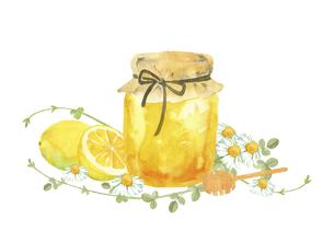 ハチミツとレモンとお花の水彩イラストのイラスト素材 [FYI04769282]