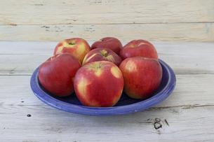 青い皿に盛った紅玉りんごの写真素材 [FYI04769328]