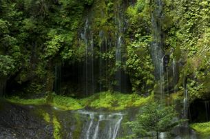 不易の滝の写真素材 [FYI04769351]