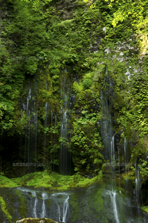 不易の滝の写真素材 [FYI04769353]